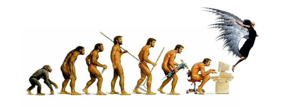 evolution, one community