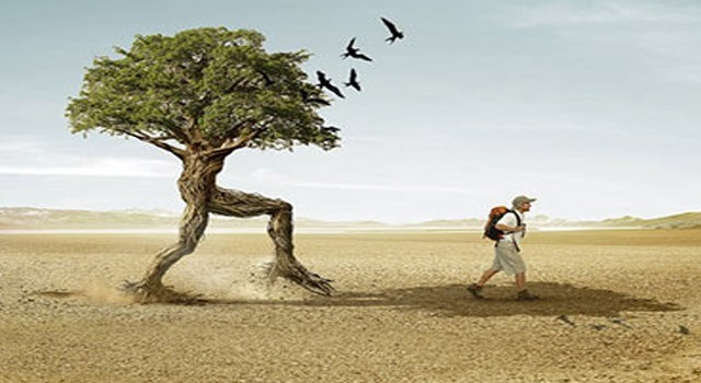 why-sustainability-header-930x350
